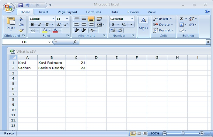 CSV File in Spread Sheet