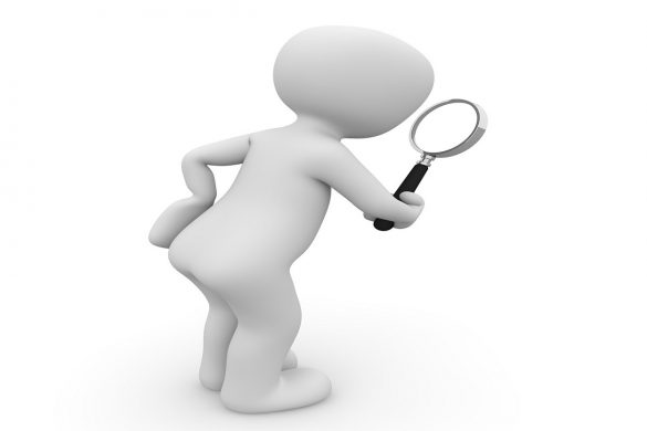 Using Niche Search Engines to Find What You are Looking For