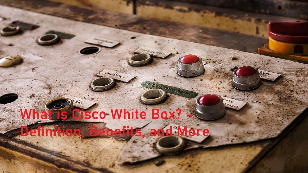 What is Cisco White Box? – Definition, Benefits, and More