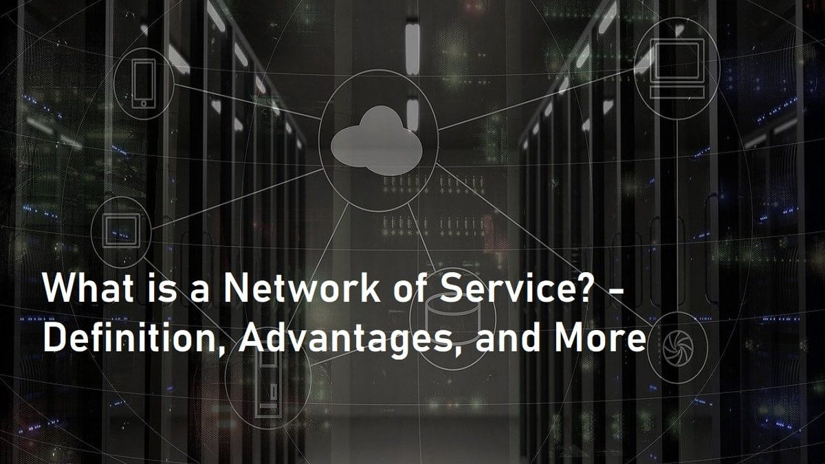What is a Network of Service? – Definition, Advantages, and More