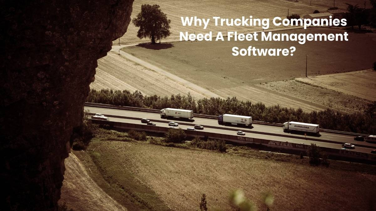 Why Trucking Companies Need A Fleet Management Software?