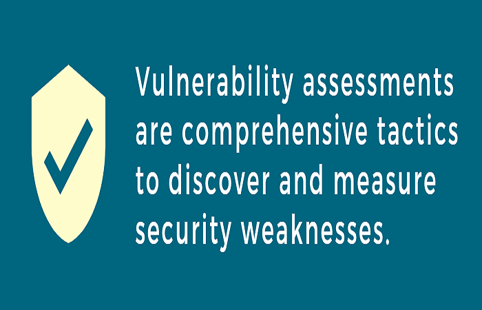 image result for vulnerability assessments