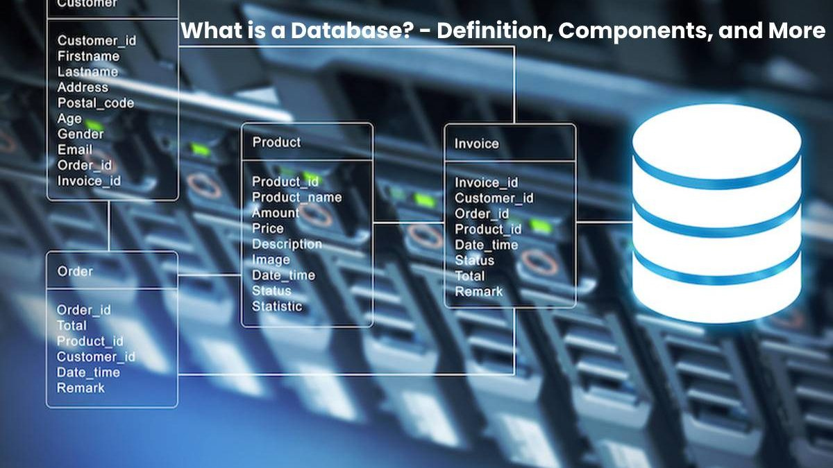 What is a Database? – Definition, Components, and More