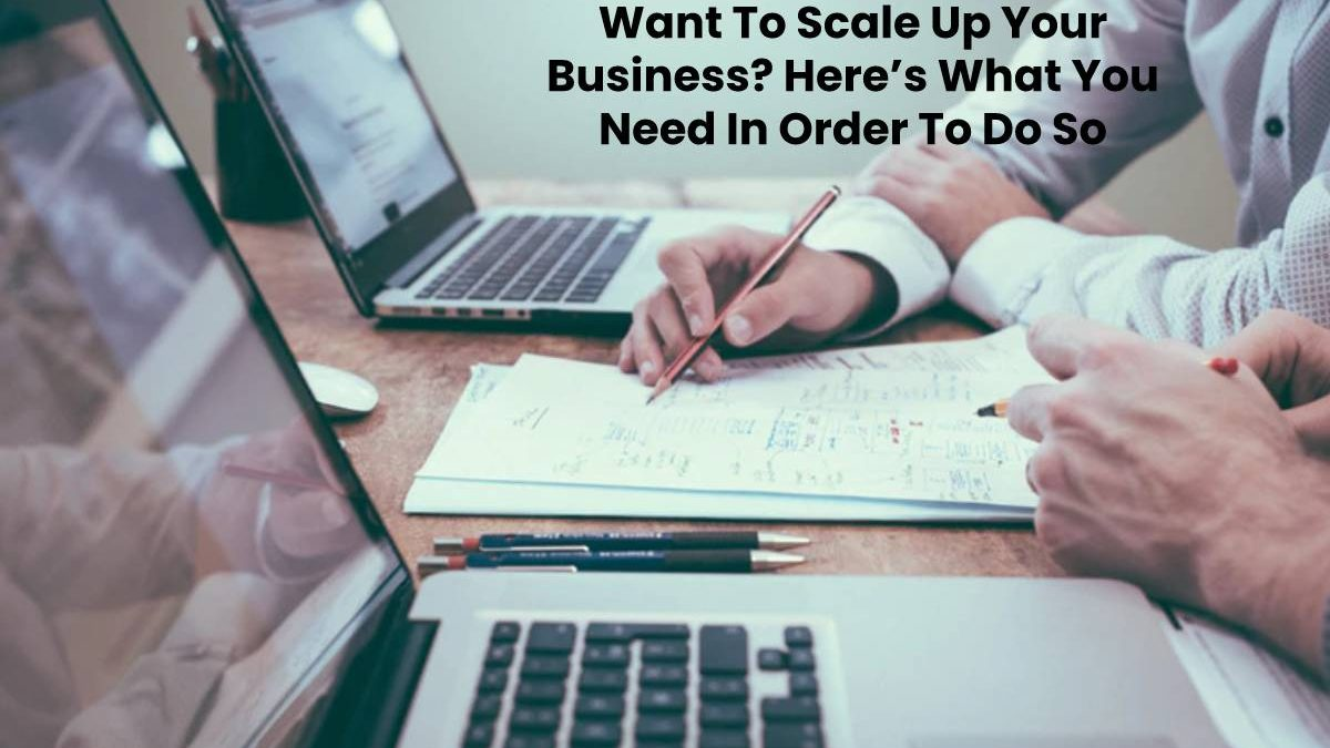 Want To Scale Up Your Business? Here's What You Need In Order To Do So