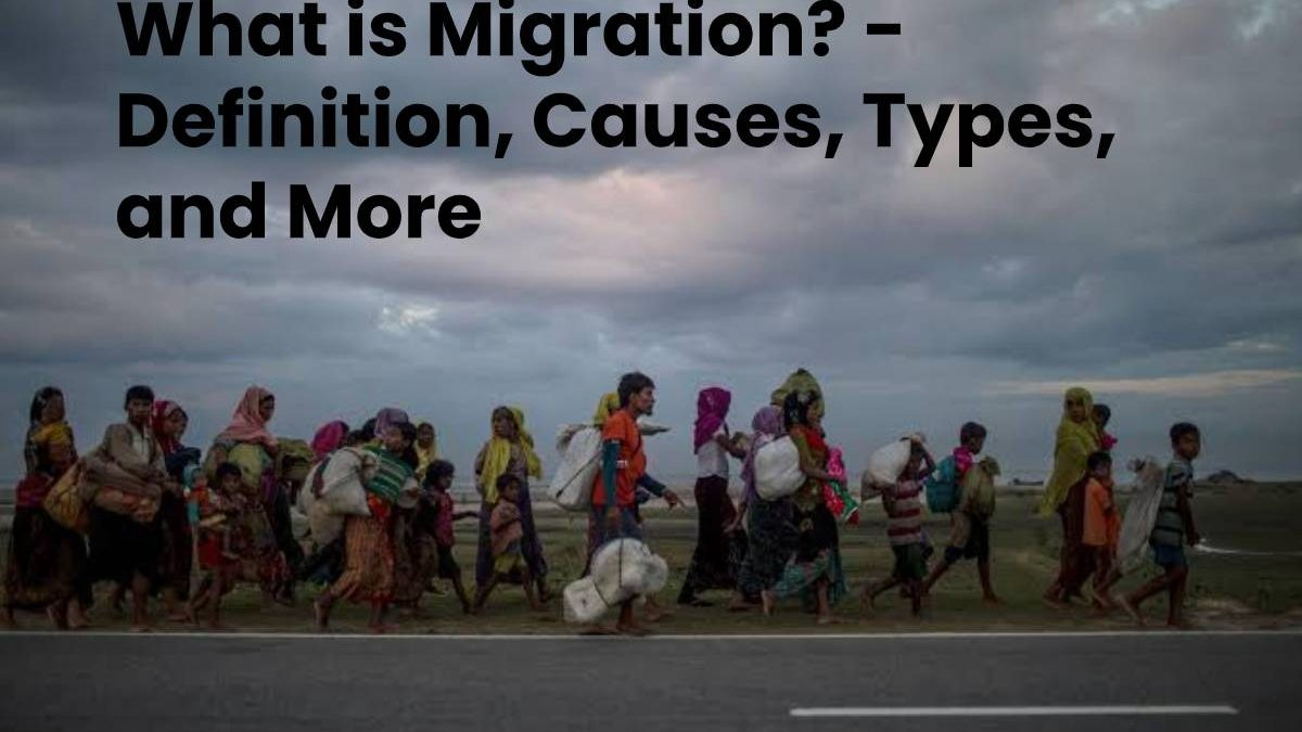 What is Migration? – Definition, Causes, Types, and More
