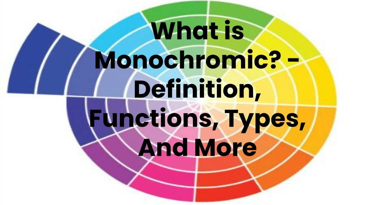 What is Monochromic? – Definition, Functions, Types, And More