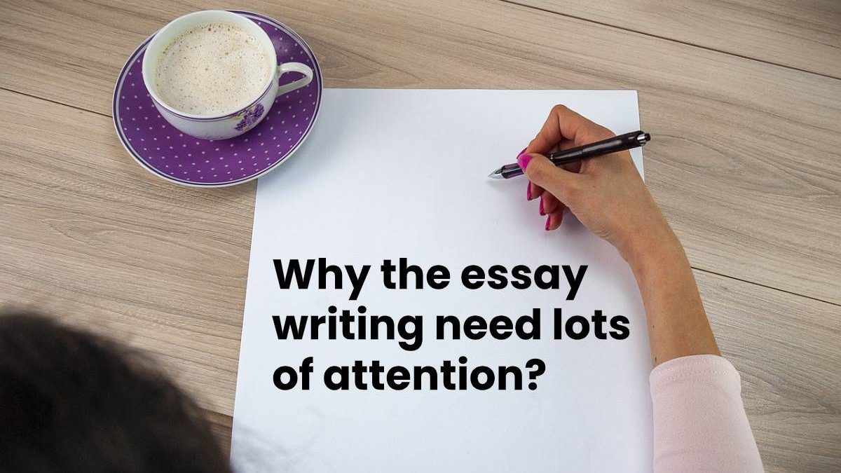 Why the essay writing need lots of attention?
