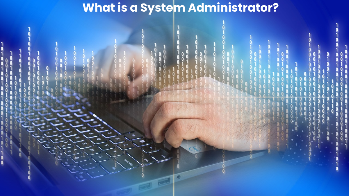 What is a System Administrator