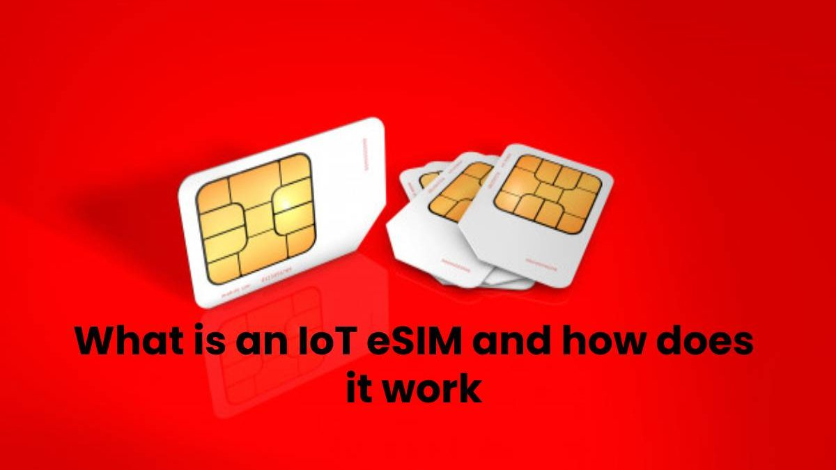 What is an IoT eSIM and how does it work?
