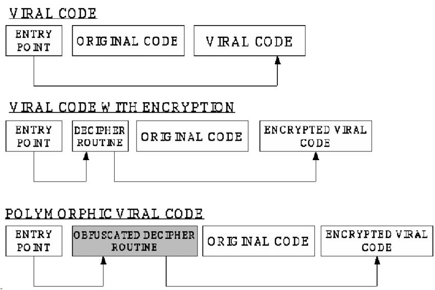 polymorphic-code