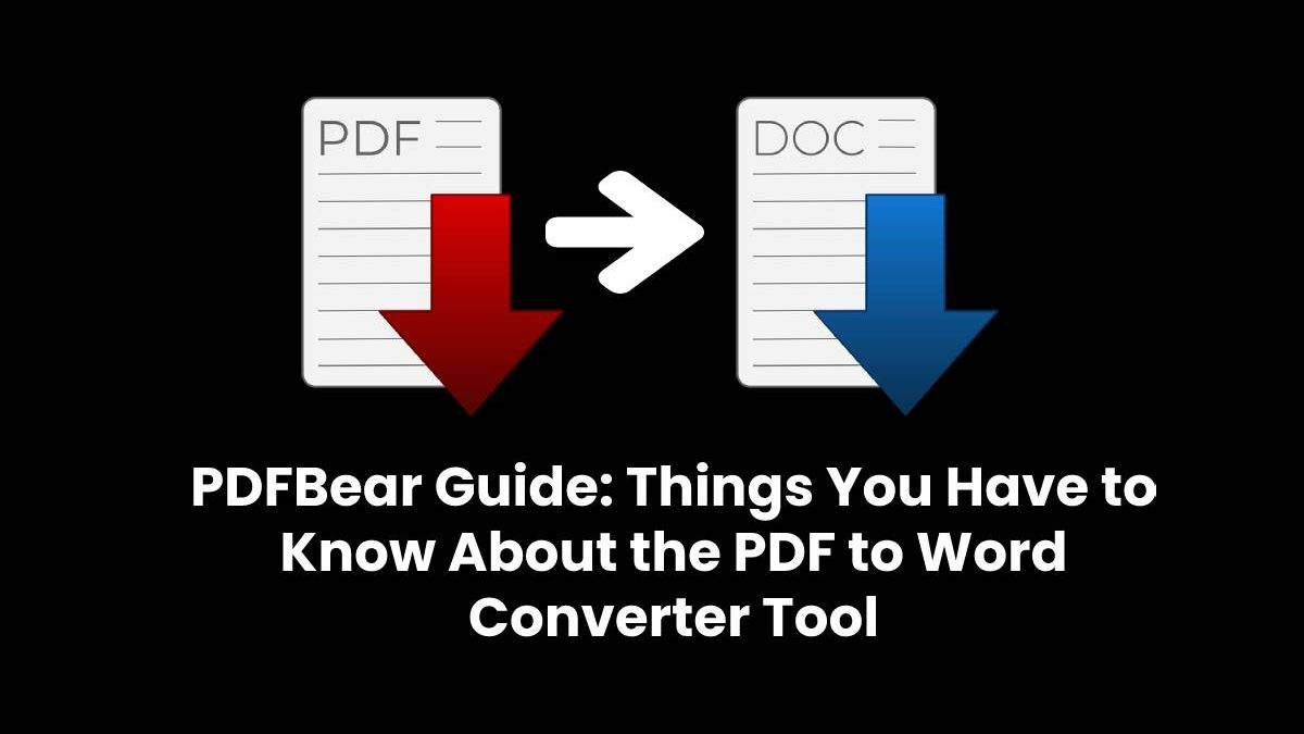 PDFBear Guide: Things You Have to Know About the PDF to Word Converter Tool
