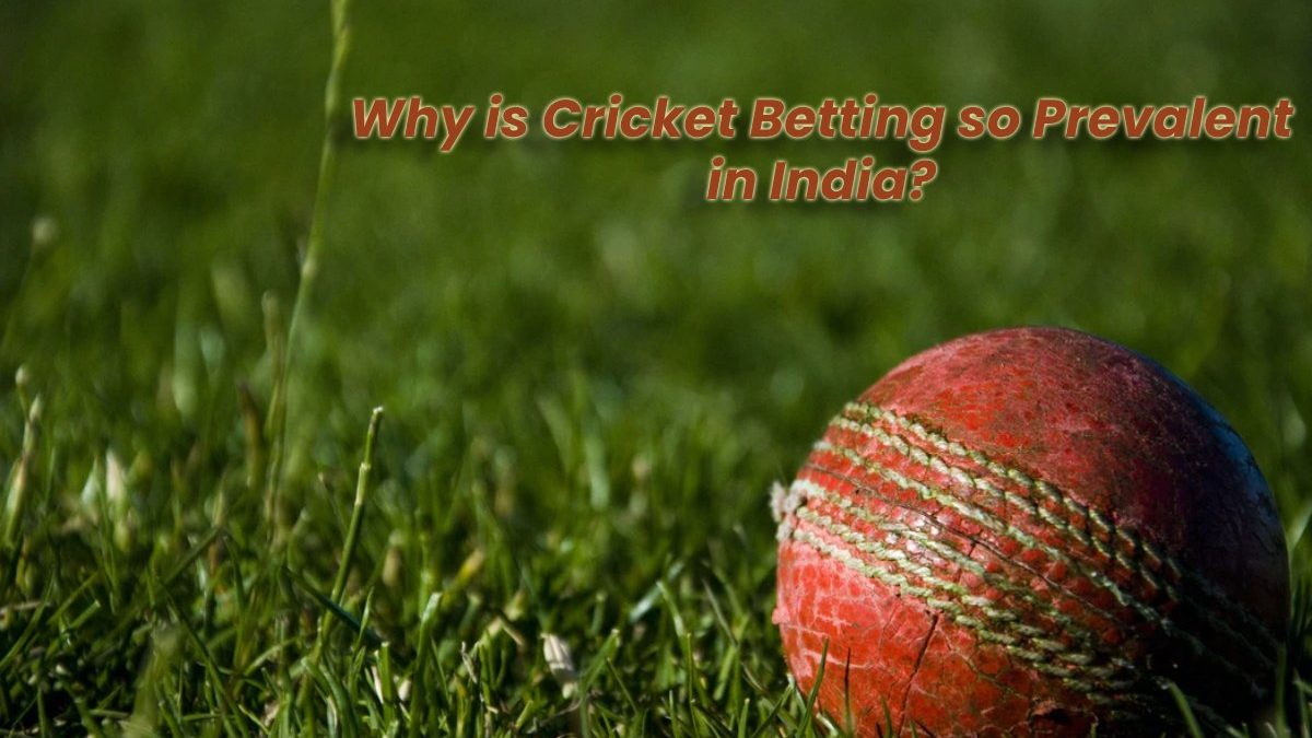 Why is Cricket Betting so Prevalent in India?