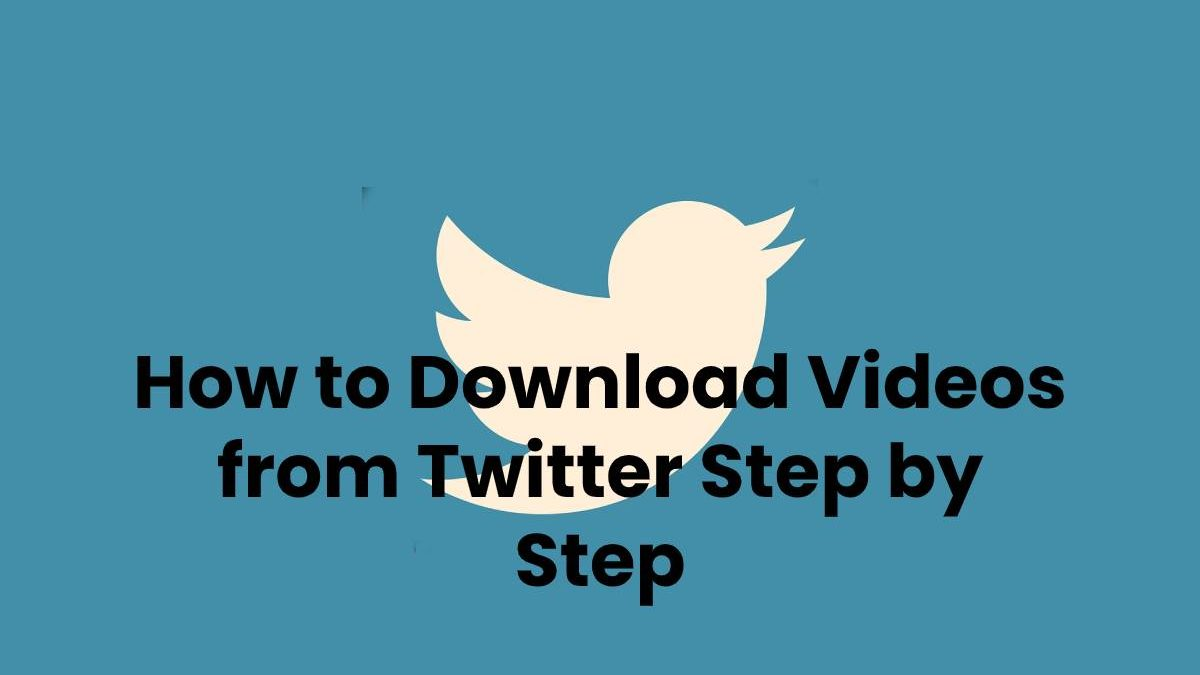 How to Download Videos from Twitter Step by Step