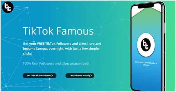 Tiktokfollowersfree.com