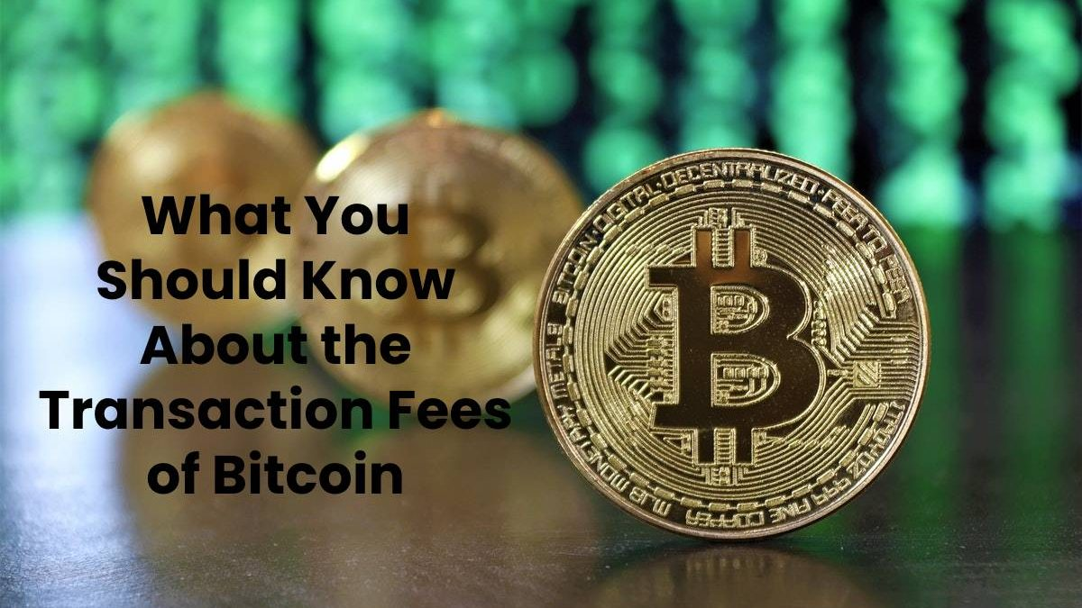 What You Should Know About the Transaction Fees of Bitcoin