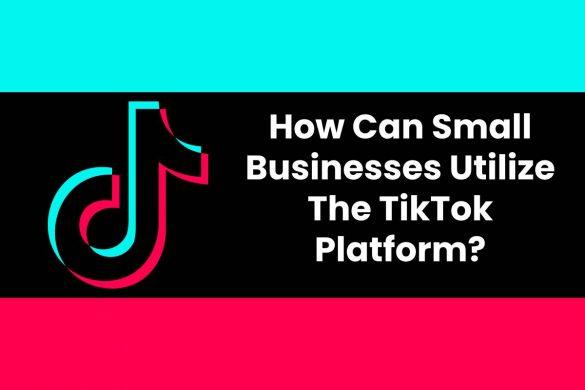 How Can Small Businesses Utilize The TikTok Platform?