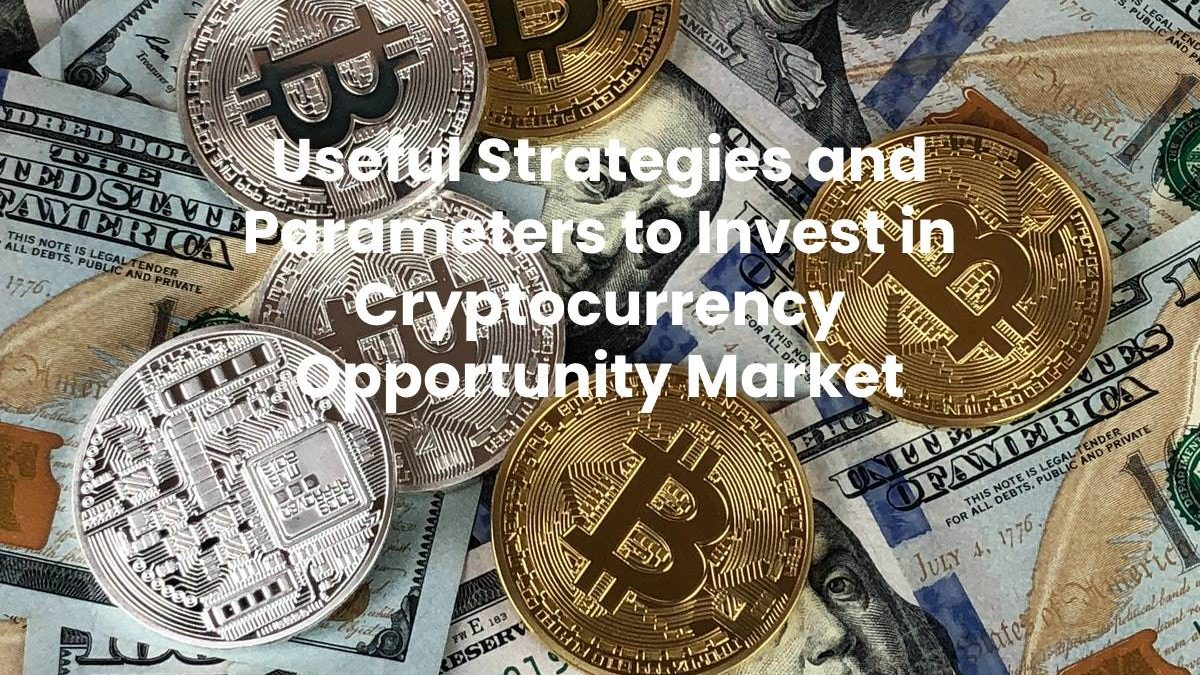 Useful Strategies and Parameters to Invest in Cryptocurrency Opportunity Market