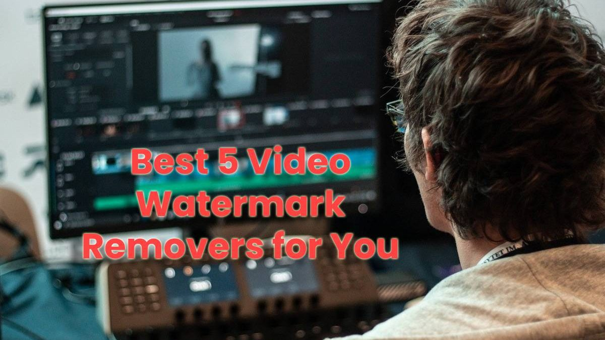 Best 5 Video Watermark Removers for You